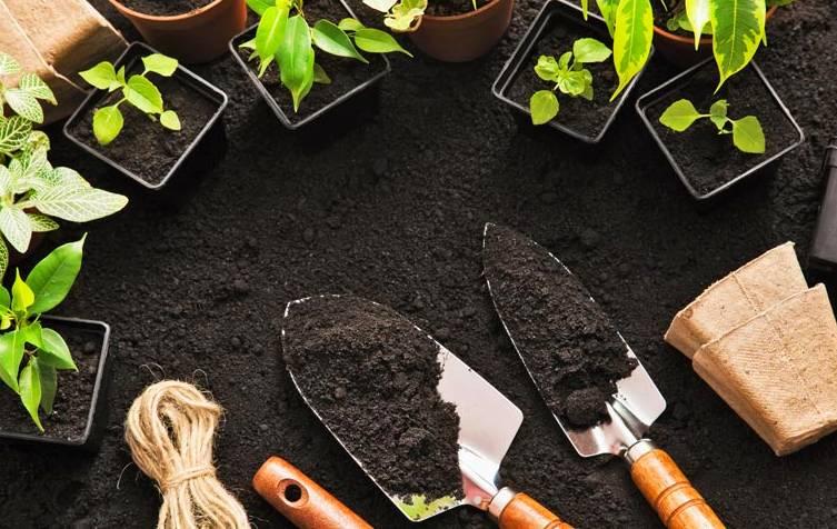 Tutoriales de jardineria gratis manuales y tutoriales - Libros sobre jardineria ...